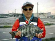 2001年5月3日富山新港黒鯛43.5センチ